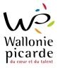 wapi_logo